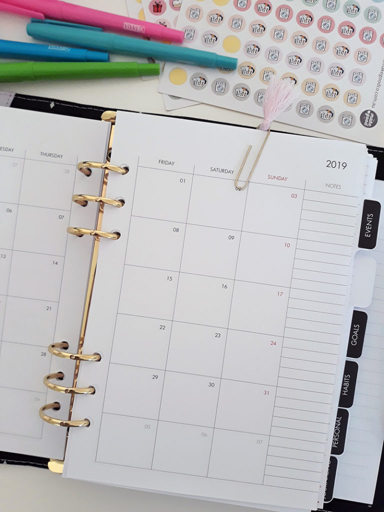 Large ring-bound planner open to the monthly view calendar